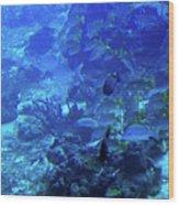 Submarine Underwater View Wood Print