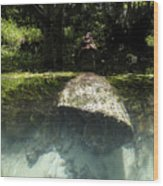 Submerged Wood Print