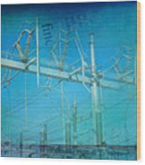 Substation Insulators Wood Print
