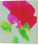 Subtle Rose Wood Print