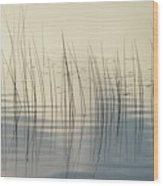 Subtle Serenity Wood Print
