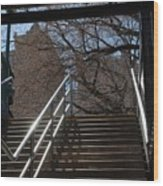 Subway Stairs Wood Print