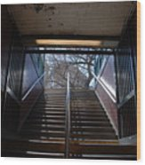 Subway Stairs To Freedom Wood Print