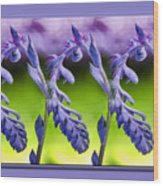 Succulent Swirl Wood Print