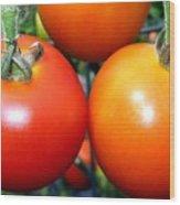 Succulent Tomatoes Wood Print