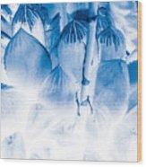 Succulents In Bleu Wood Print