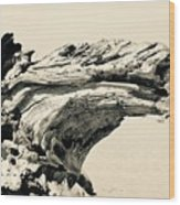 Suddenly A Lone Beach Camel Appeared Wood Print