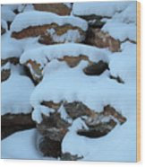 Suddenly Winter 2 Wood Print