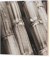 Sugar Cane - Sepia Wood Print