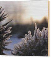 Sugar Crystals Wood Print