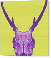 Sugar Deer Wood Print by Nelson Dedos Garcia
