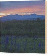Sugar Hill Lupines And Presidential Range At Dawn Wood Print