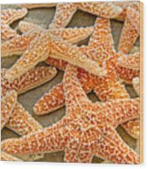 Sugar Starfish Wood Print