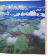 Sugarcane Fields In Central Maui Wood Print