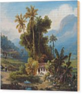 Sugarcane Plantation Of San Esteban Near Puerto Cabello, Venezuela Wood Print