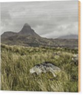 Suilven Mountain Wood Print