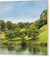 Suizenji Lake Wood Print