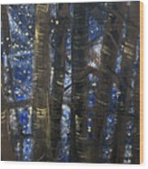 Sukkot II Stars 2015035  Wood Print