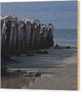 Sullivans Island 42611-1 Wood Print by Melissa Wyatt