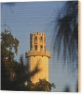 Sulphur Springs Tower Wood Print