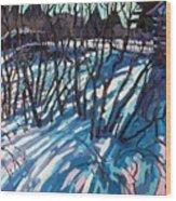 Sumac Snow Shadows Wood Print