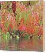 Sumac Tree Autumn Reflections Wood Print