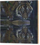 Sumatran Tiger Reflection Wood Print