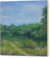 Summer Afternoon At Ashlawn Farm Wood Print