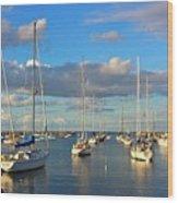 Summer Afternoon At Rockport Harbor Wood Print