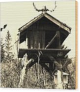 Summer Alaskan Cache Wood Print