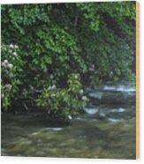 Summer Along Birch River Wood Print