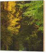 Summer And Fall Collide Wood Print