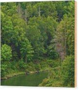 Summer At Black Rock Wood Print