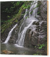 Summer At Glen Moss Falls Wood Print