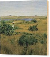 Summer At Shinnecock Hills Wood Print by William Merritt Chase