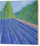 Summer At The Lavender Farm Wood Print