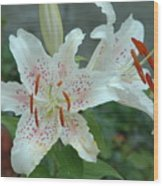 White Tiger Lilies  Wood Print