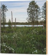Summer By The Lake Enajarvi Wood Print