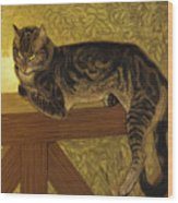 Summer Cat On A Balustrade Wood Print