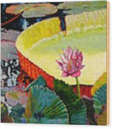 Summer Colors On The Pond Wood Print