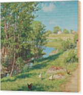 Summer Day By The Stream Wood Print