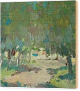 Summer Day In City Park. Trees Wood Print