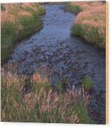 Summer Evening On Palouse River Wood Print