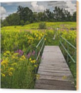 Summer Field Of Wildflowers Wood Print