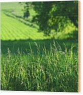 Summer Fields Of Green Wood Print