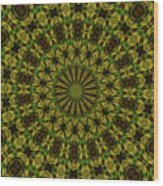 10696 Summer Fire Mask 54 Kaleidoscope 1 Wood Print