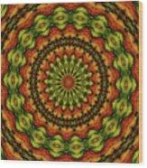 10698 Summer Fire Mask 54 Kaleidoscope 3 Wood Print