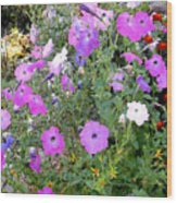 Summer Flowers 5 Wood Print
