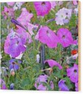 Summer Flowers 8 Wood Print
