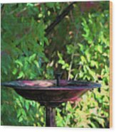 Summer Fountain Impasto Wood Print